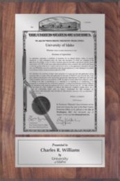 "Patent Plaques Custom Wall Hanging Traditional PVP Plaque - 8"" x 12"" Silver and Walnut."
